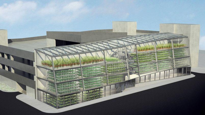 Image de synthèse de la future ferme verticale de Jackson (États-Unis). Crédits Photo: Vertical Harvest