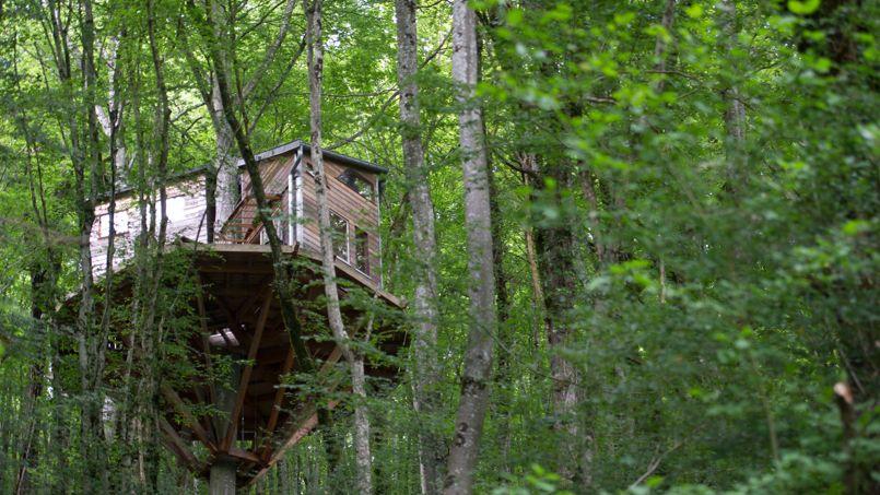 son combat contre la mairie pour sauver sa cabane dans les bois. Black Bedroom Furniture Sets. Home Design Ideas