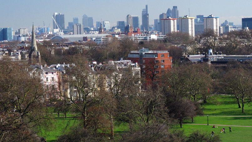 Vue de Londres depuis Primrose Hill. Le jardin est situé derrière ces maisons. Crédit: Charles D P Miller (Flickr).