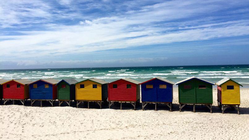 Miuzenberg, à quelques kilomètres de Cape Town, en Afrique du Sud. Crédit: Alice Jourdan.