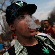 Aux États-Unis, les étudiants fument désormais plus de marijuana que de cigarettes