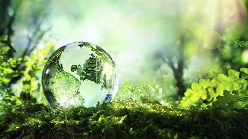 """Résultat de recherche d'images pour """"développement durable"""""""