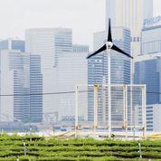 Développement durable : panorama du secteur