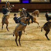 Première rentrée pour l'Ecole française du cheval et de l'équitation