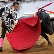 Espagne : tollé autour de la création d'un bac pro «torero»