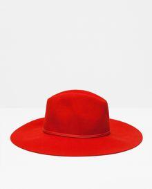 Chapeau - Zara - 29,95 €