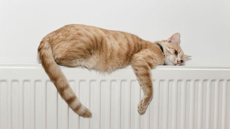 l individualisation des frais de chauffage fait pschitt. Black Bedroom Furniture Sets. Home Design Ideas