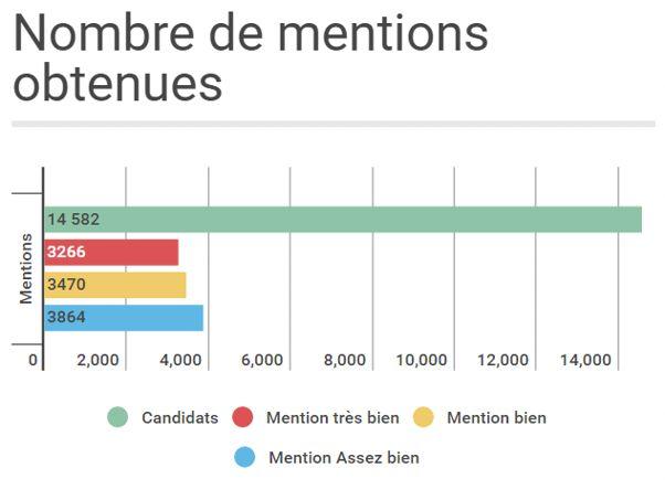 Au total, 10 593 candidats ont obtenu une mention.