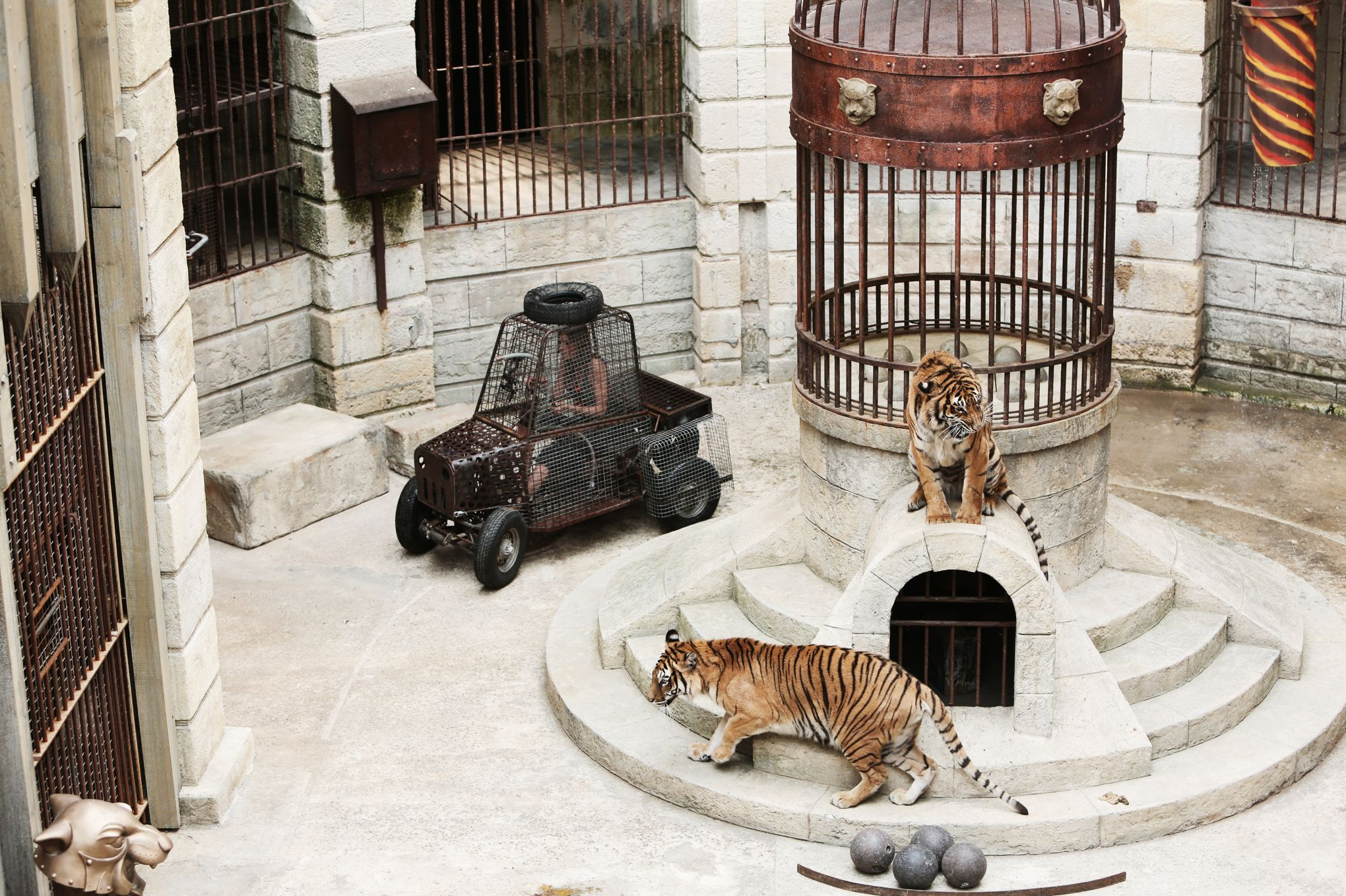 Fort Boyard Tigres Serpents Araignées L Incroyable Logistique