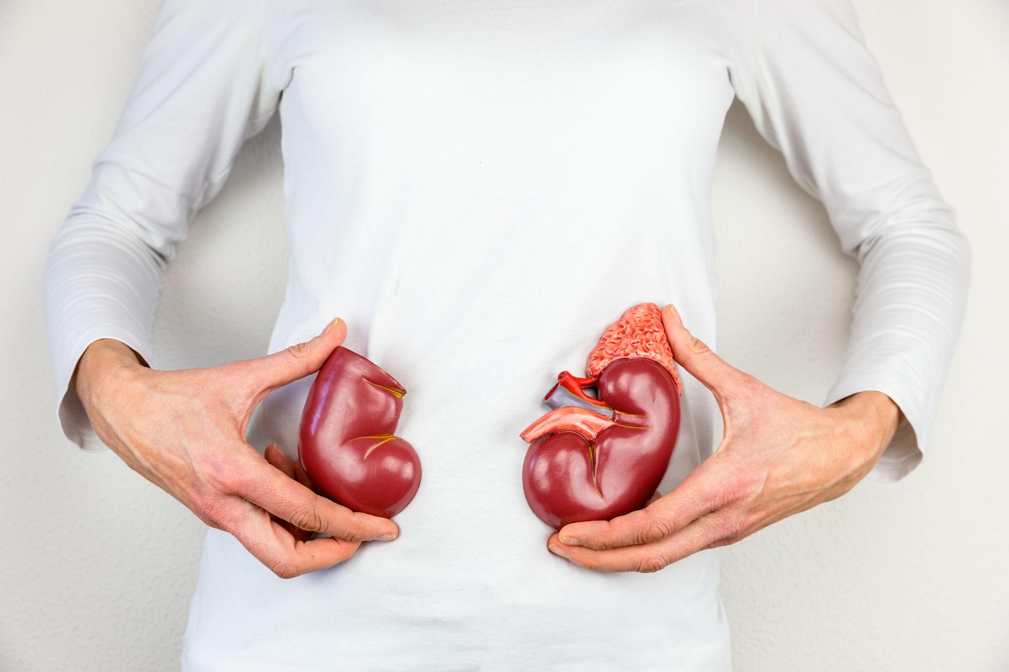 tratamiento holístico para la insuficiencia renal