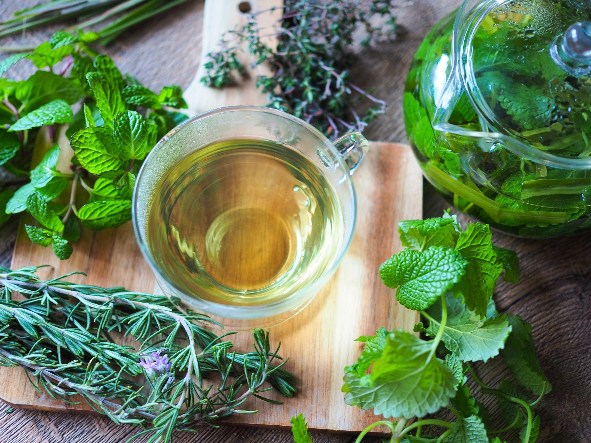 Medicina herbaria: tratamientos que deben manejarse con precaución