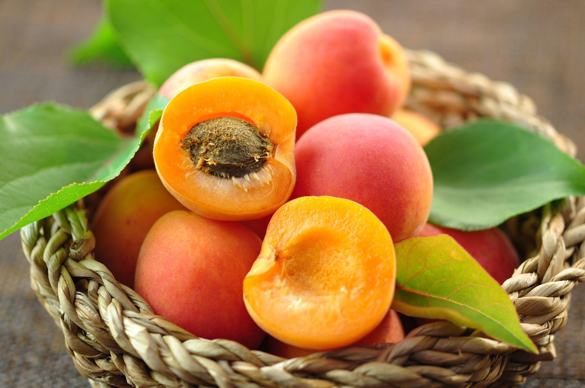 Attention aux intoxications au cyanure avec les amandes d'abricots