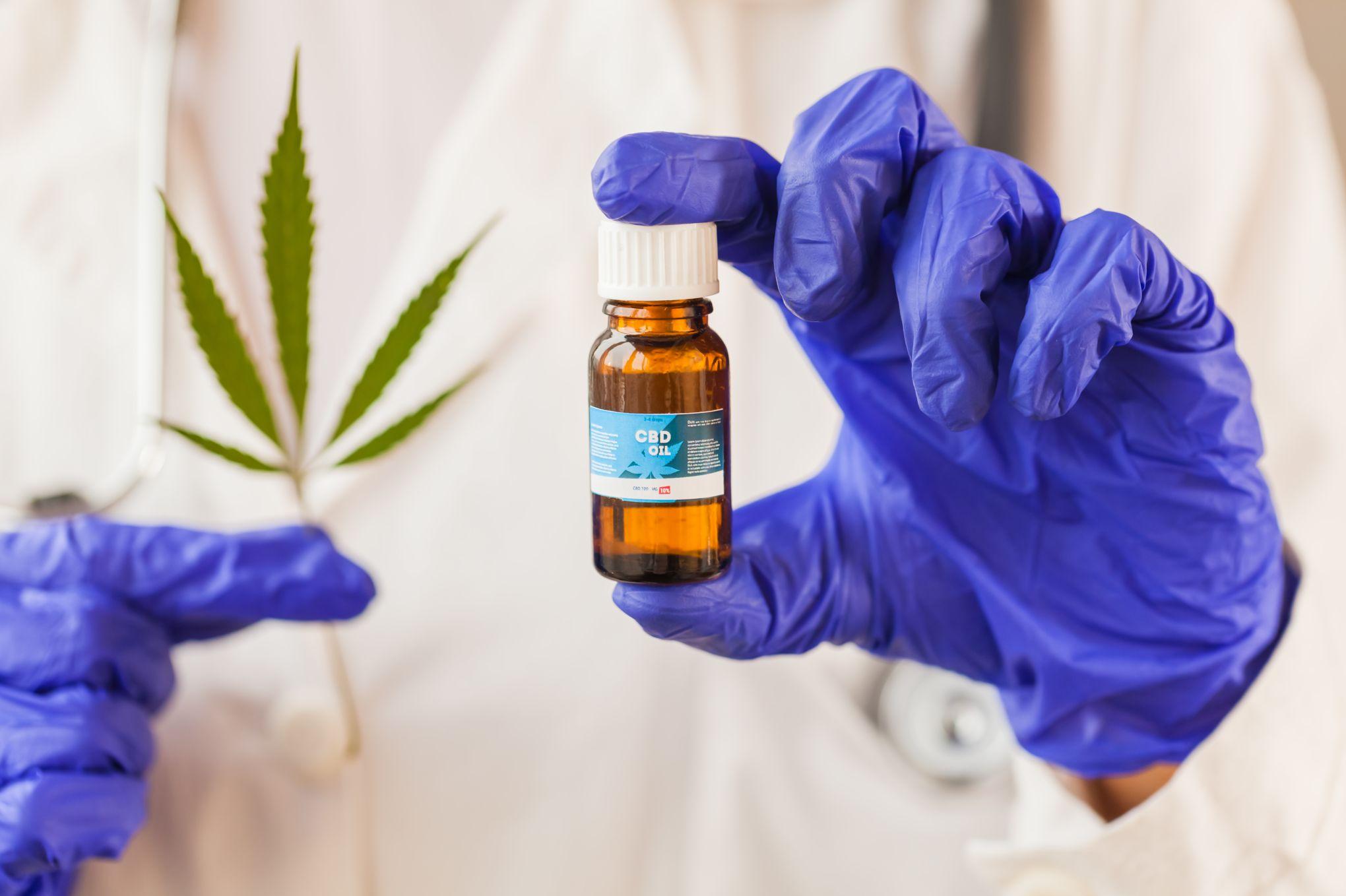 6d8c9afb70 Le cannabis médical, un antidouleur hors la loi en France