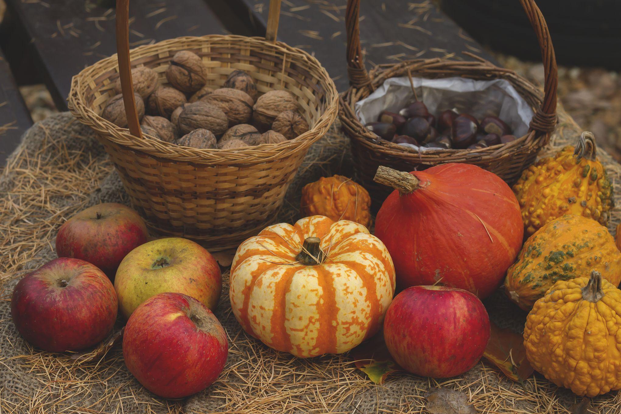 Le panier de saison du mois : les fruits et légumes à consommer en  octobre 2018