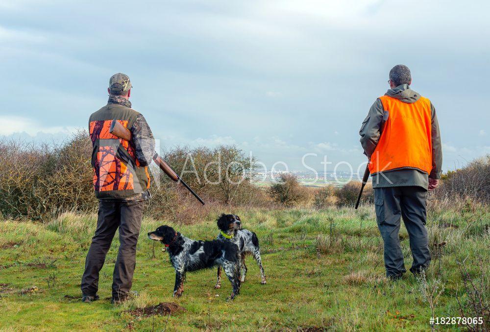Le permis de chasse devrait coûter 5 fois moins cher en 2019
