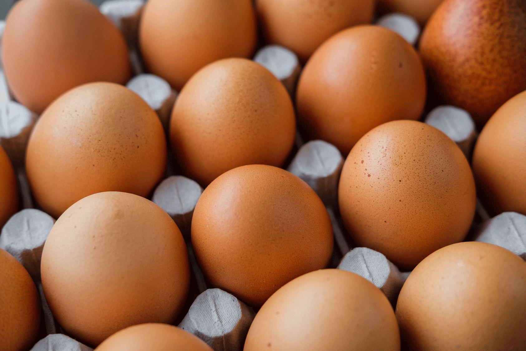 Alerte aux risques d'intoxications avec des œufs « Les Poulettes »