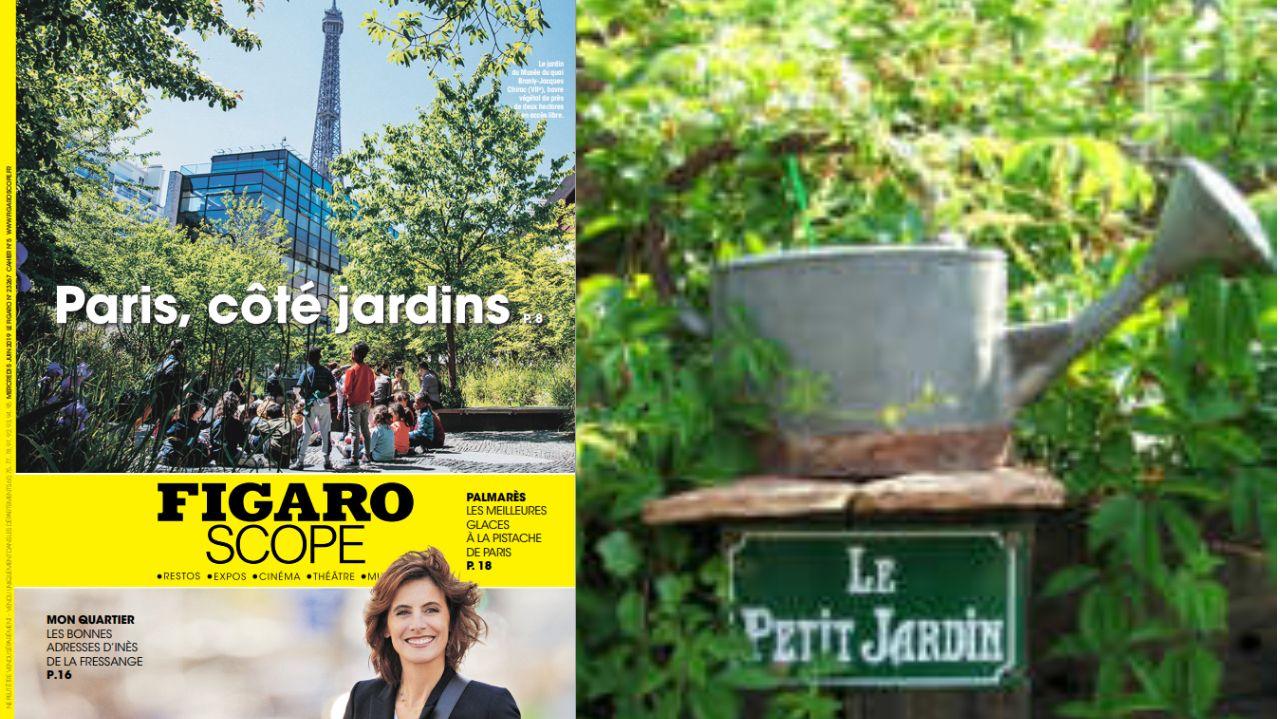 Paris côté jardins ou la revanche du « petit jardin » de Dutronc