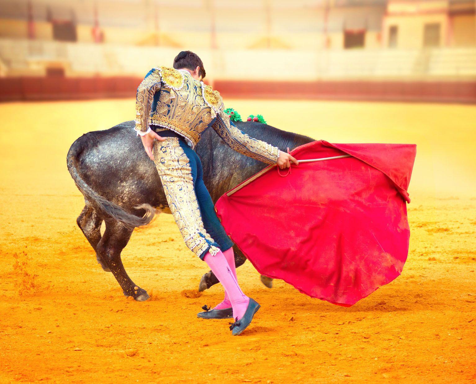 L'appel de 40 personnalités: «La corrida est un art et nul ne doit en être exclu»