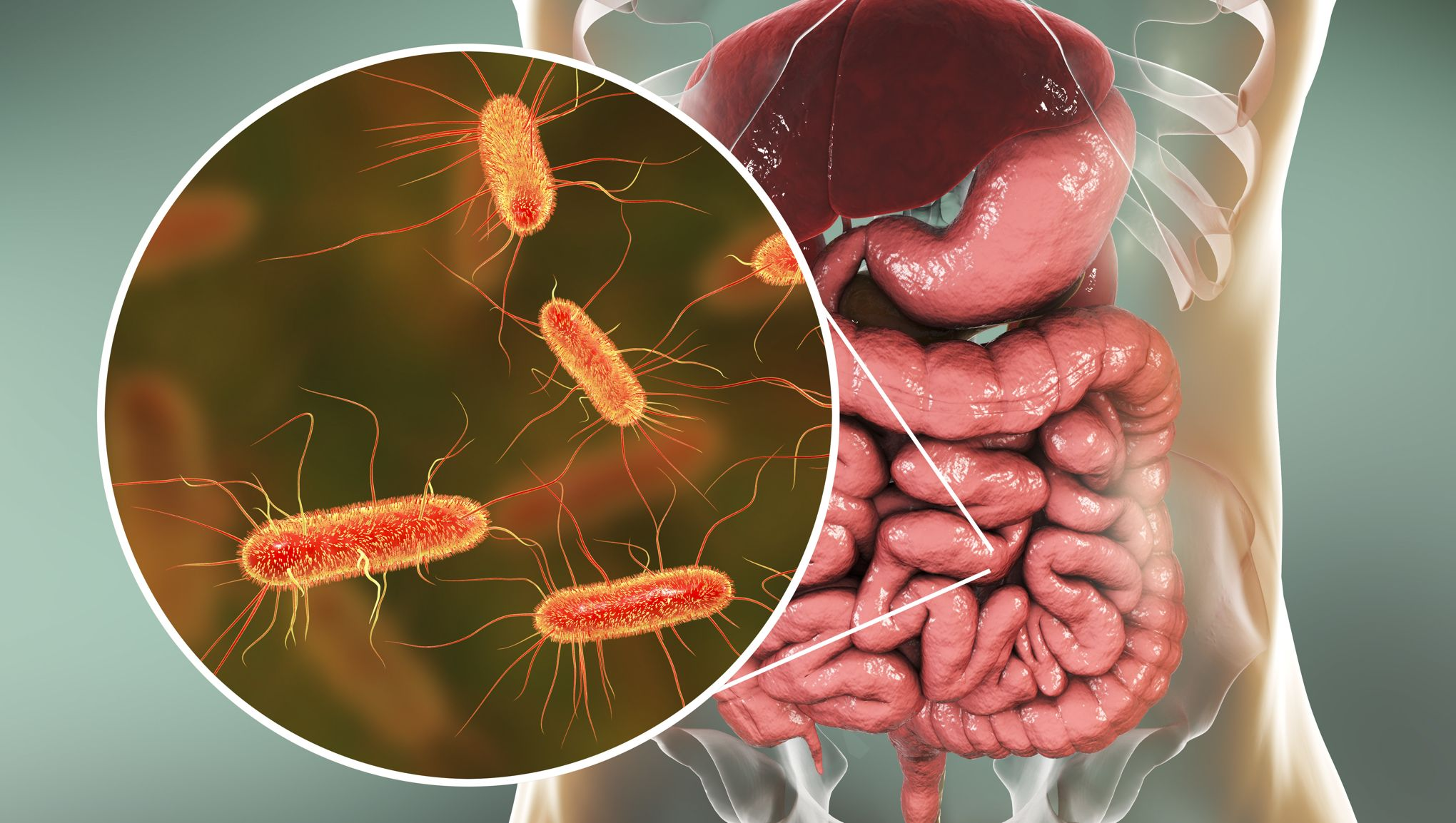 Tester son microbiote sert-il à quelque chose?