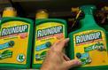 La justice annule l'autorisation de mise sur le marché du Roundup Pro 360
