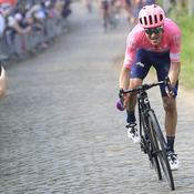 Tour des Flandres 2019