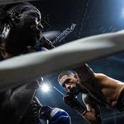 Boxe : l'uppercut de Yoka qui a assommé Djeko (vidéo)