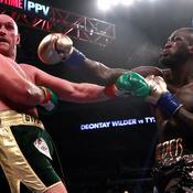 Poids lourds : «Cette fois, Fury ne se relèvera pas...», annonce Wilder