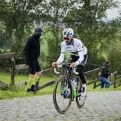 Tour des Flandres : Bras de fer entre van Aert et van der Poel, Alaphilippe à l'affût