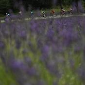 Tour de France 2019, 17e étape
