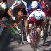 Le coup de coude de Sagan qui a provoqué son exclusion du Tour