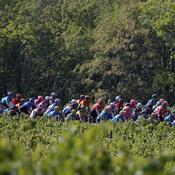 Tour de France 2023: Les chiffres du grand départ de Bilbao