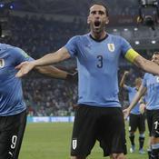 Luis Suarez et Diego Godin