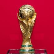 Pensez-vous que l'équipe de France puisse remporter la coupe du monde ?