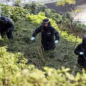 Recherches policières