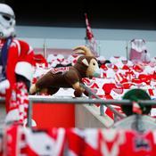 Bundesliga : Cologne-Düsseldorf en direct