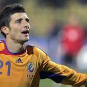 Daniel Niculae Roumanie Euro 2008