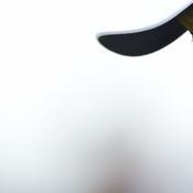 Open britannique : Tiger Woods absent du final à Portrush