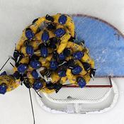 Hockey Suède