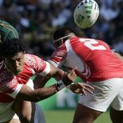 rugby afrique du sud tonga 5372