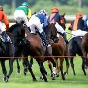Auteuil attend les cracks