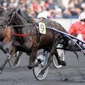 Olga du Biwetz s'impose facilement dans le Prix de Bourgogne