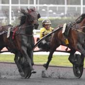 Qwerty gagne en costaud