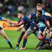 Privée de Super Rugby, l'Australie lance un championnat national avec ses provinces