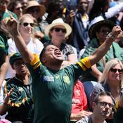 Afrique du Sud : Scènes de liesse à Johannesbourg après le titre mondial