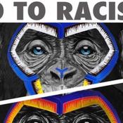 Italie : La Ligue de football critiquée pour ses singes anti-racistes