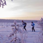 Le Laponie Trophy : le raid féminin solidaire dans le Grand Nord