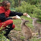 Lewis Hamilton (re)part en croisade contre les zoos et les cirques