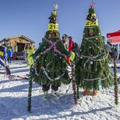 Des sapins skieurs