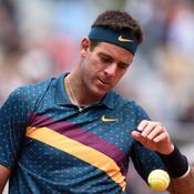 Nouvelle blessure grave pour Del Potro, forfait pour Wimbledon