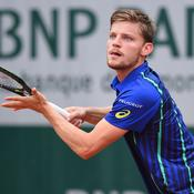 Goffin-Gulbis en DIRECT